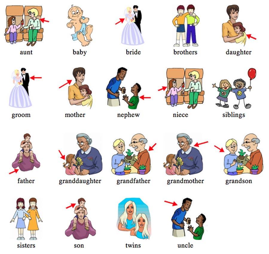 Семья на английском языке